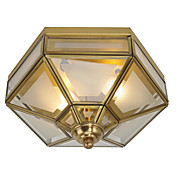 Stylish Pendant Light with 2 Lights