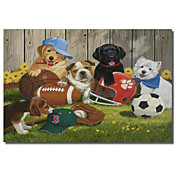 Printed Canvas Art Animal Let's Play Ball by William Vanderdasson with Stretched Frame