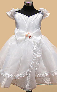Organza A-line Princess Flower Girl Dress