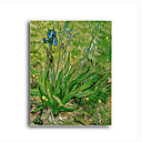 Stretched Canvas Handmade The Iris Painting by Vincent Van Gogh  0192-YCF103217