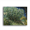 Stretched Canvas Handmade Lilac Bush Painting by Vincent Van Gogh 0192-YCF103189