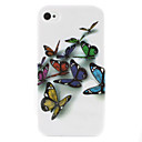 Big Butterflies Pattern Hard Case for iPhone 4 and 4S (Multi-Color)