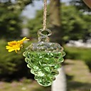 Hanging Gape Shaped Glass Vase