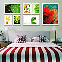 Modern Wall Photo Frame Collection-Set de 7 PM-7A