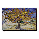 Mulberry Tree, c.1889 by Vincent Van Gogh Famous Stretched Canvas Print