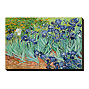 Irises Saint-Remy c1889 by Vincent Van Gogh Famous Stretched Canvas Print